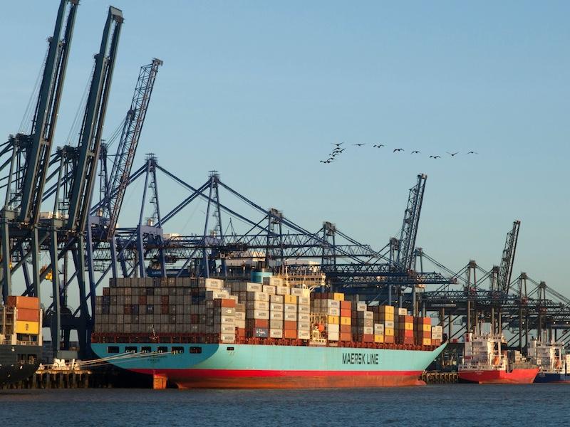 Cory-Logistics-Profile-Image-2