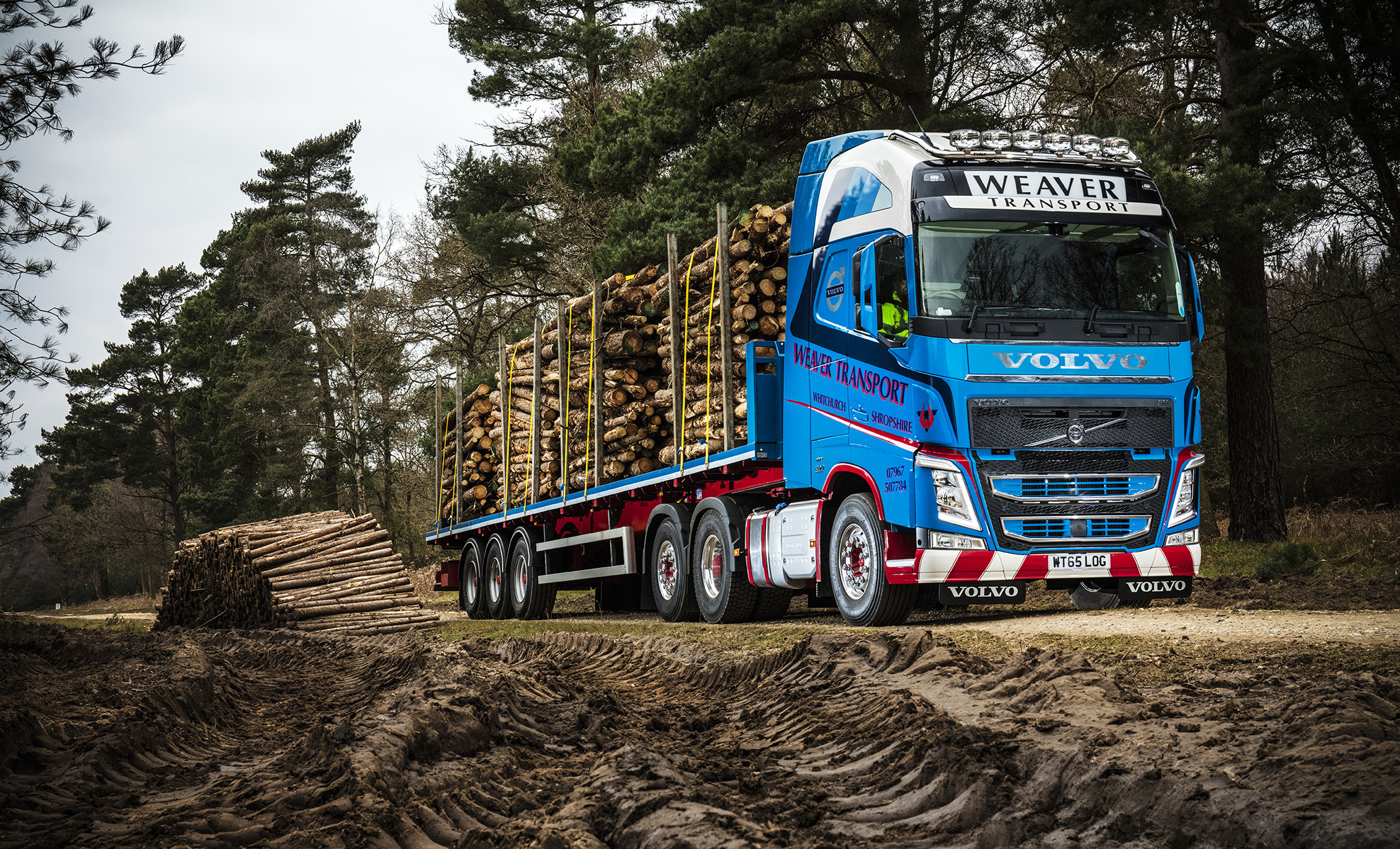Volvo FH is a cut above for Weaver's timber duties | Fleet UK Haulier